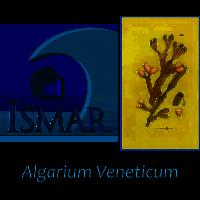 Algarium Veneticum